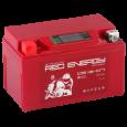 Аккумулятор DS 1207  Red Enerdgy